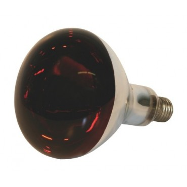 Bec infrarosu 150W
